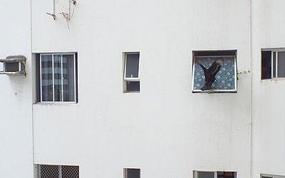 Caçando uma janelinha pra meter as caras