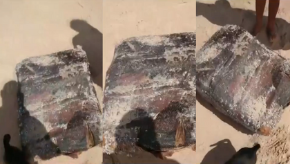 Nova 'caixa misteriosa' de navio nazista é encontrada na Bahia