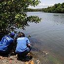 Foram identificadas pequenas pelotas de óleo adentrando o estuário do Rio Joanes