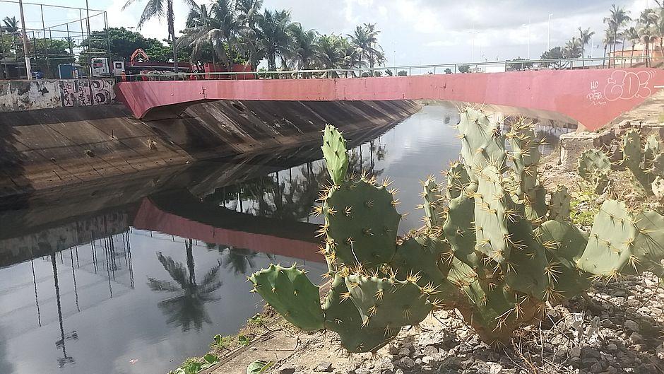 Lixo e esgoto deixam águas do Rio Camarajipe, no Costa Azul, com qualidade péssima