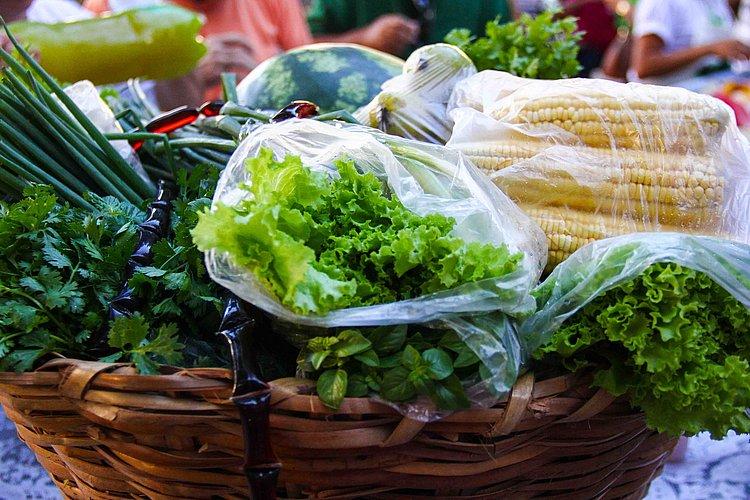 Mundo tem desafio de alimentar 10 bilhões de pessoas