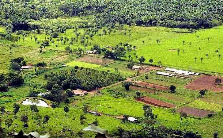 Receita espera receber 933 mil declarações de imóveis rurais na Bahia