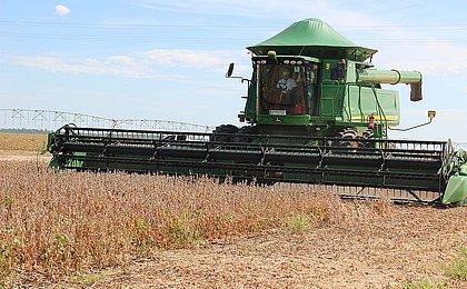 Uso de terras para agricultura cresce em 87,3% entre 2000 e 2018 na Bahia