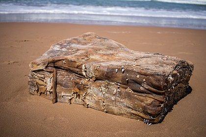 Praia do Flamengo: mais duas 'caixas misteriosas' de navio nazista aparecem na Bahia