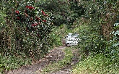Local usado por quadrilha fica em frente ao Barradão