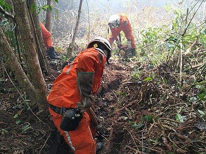 Bombeiros controlam incêndio florestal em Aldeia Velha, no sul da BA