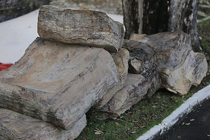 Instituto da Ufba vai analisar 'caixas misteriosas' que apareceram em praias
