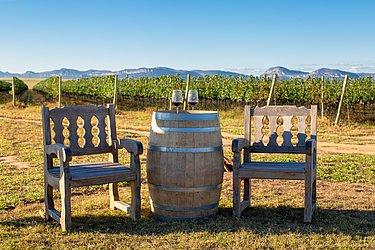 Visitantes poderão desfrutar de bebidas finas em ambiente único