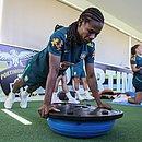 Formiga faz treinamento na academia antes de descer para o campo