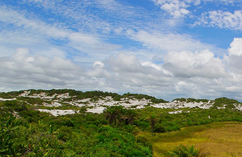 Quer saber onde está escondido em Salvador o maior parque urbano do país?