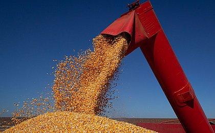 Com soja forte, safra de grãos na Bahia pode superar 10 mi de toneladas em 2021