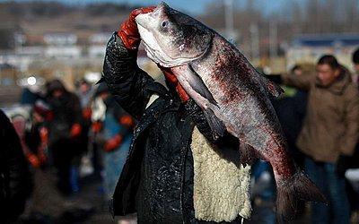 Pesca de inverno em Changchun na província de Jilin nordeste da China.