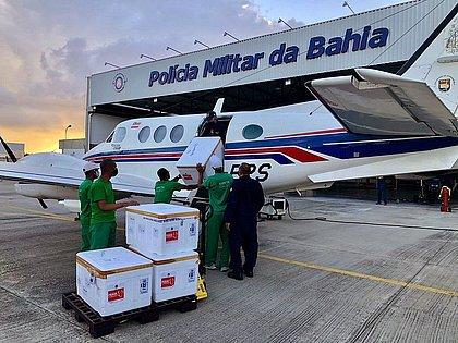 Avião que transportava vacina na Bahia sofre acidente ao bater em jumento