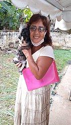 Luci também adotou alguns cães da amiga