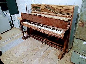 Piano alemão M Schwartzmann – É possível encontrar modelos parecidos à venda na internet entre R$ 5 mil a R$ 10 mil. Não é considerado de alta qualidade e este é o mais danificado de todos os que se encontram na Casa Pia