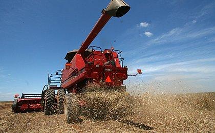 IBGE estima alta de 15,4% na safra baiana de grãos; soja terá queda