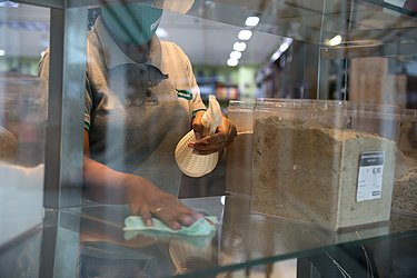Shopping centers esperam 60% do fluxo de antes da pandemia.