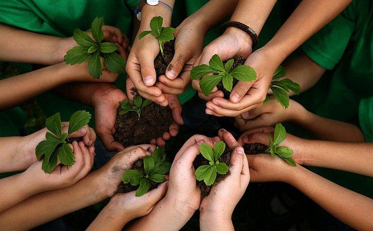 E-book discute educação para a sustentabilidade
