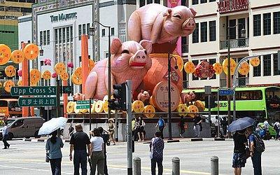 Estatuetas do porco são colocadas em Chinatown, em Singapura, em alusão ao horóscopo chinês em que o porco rege o novo ano.