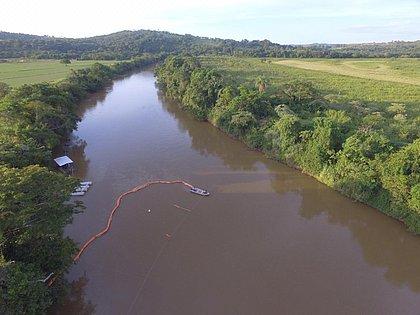 Um ano depois, Rio Paraopeba ainda não se recuperou da lama
