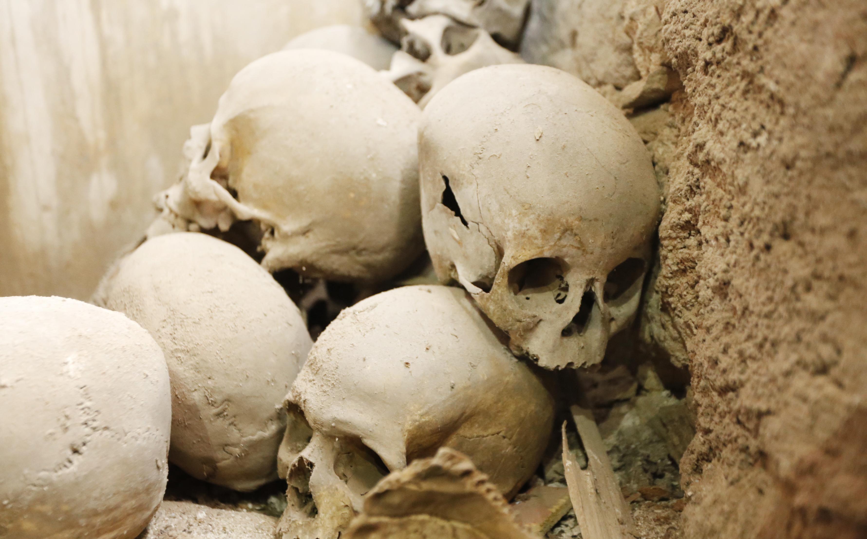 Crânios humanos encontrados atrás do altar de Santo Antônio de Loiola.