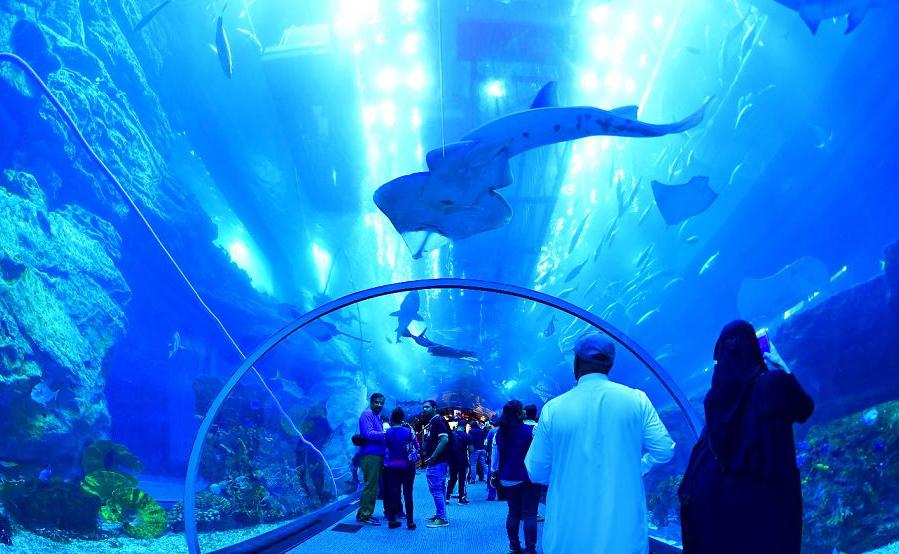 Aquário de Dubai Mall, no centro de Dubai.