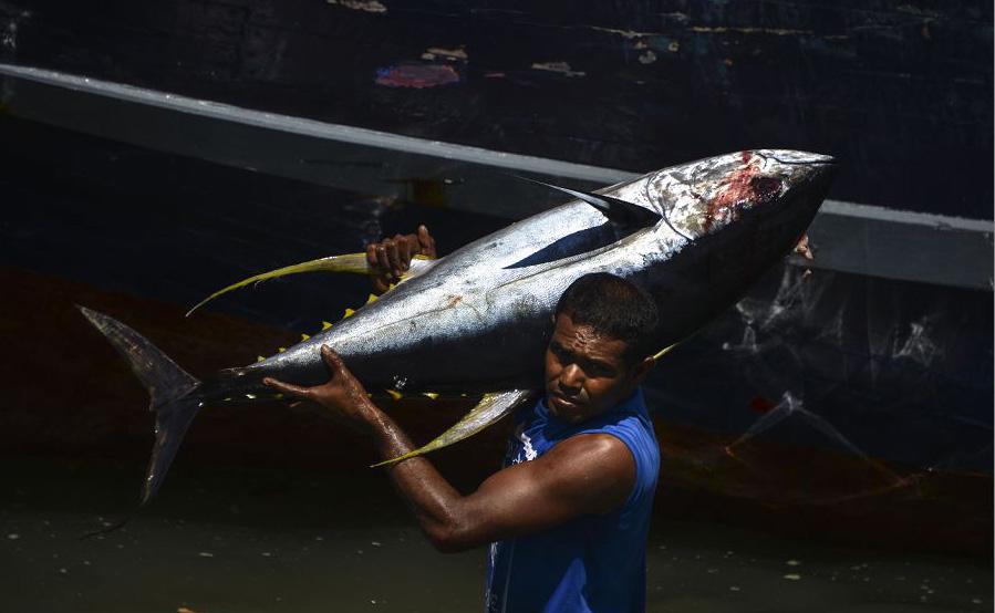 Um pescador indonésio regressa do mar em Banda Aceh, província de Aceh.
