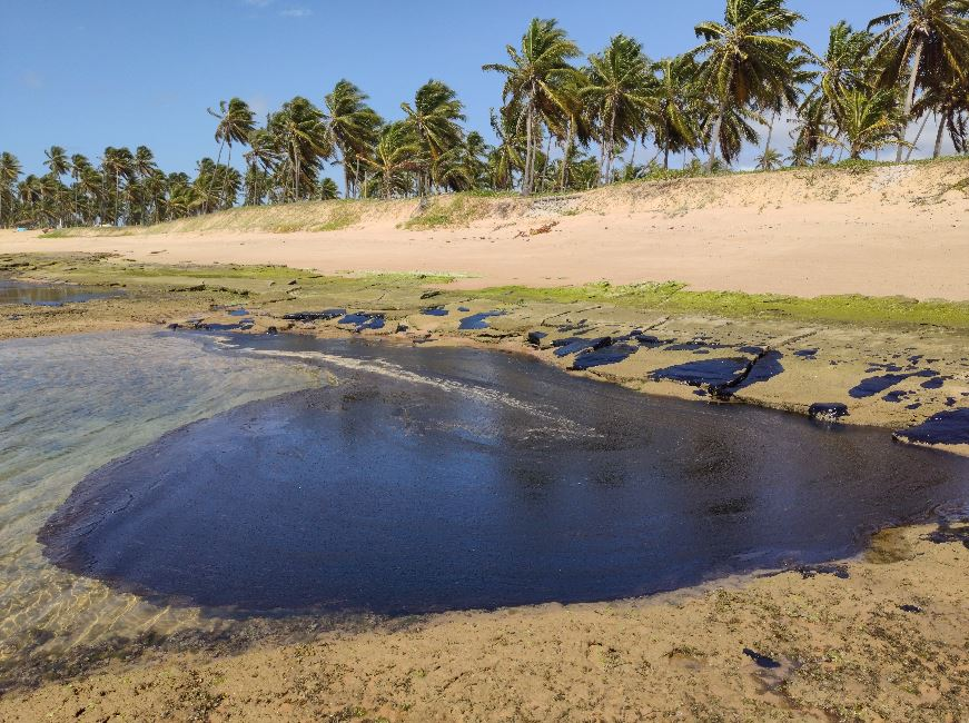 Resultado de imagem para Óleo nas praias do sul da bahia